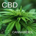 High CBD Seeds