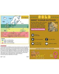Sweet 'n Sour Outdoor Feminised Spliff Seeds