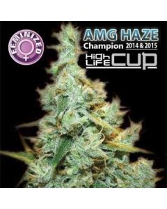 Feminised Amnesia (AMG) Seeds