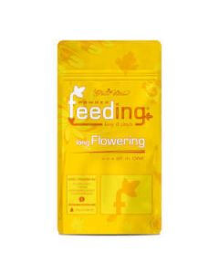 Powder Feeding Long Flowering (Sativa)