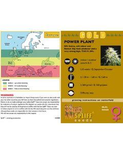Power Plant Feminised Spliff Seeds