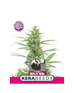 Skunk Zaden Kera Seeds
