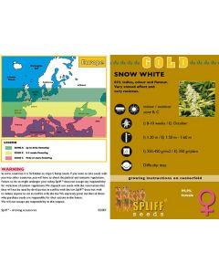 Snow White Feminised Spliff Seeds