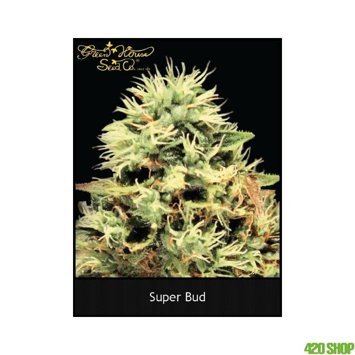 Super Bud Green House
