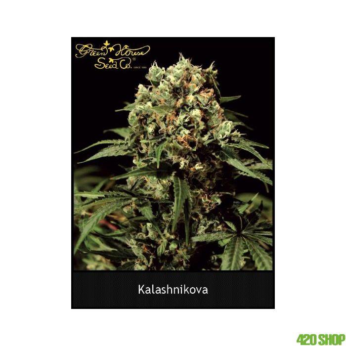 Kalashnikova Autoflower Green House