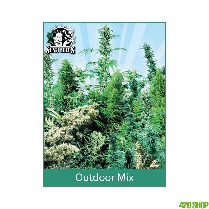 Sensi Seeds Outdoor Mix (Regular)