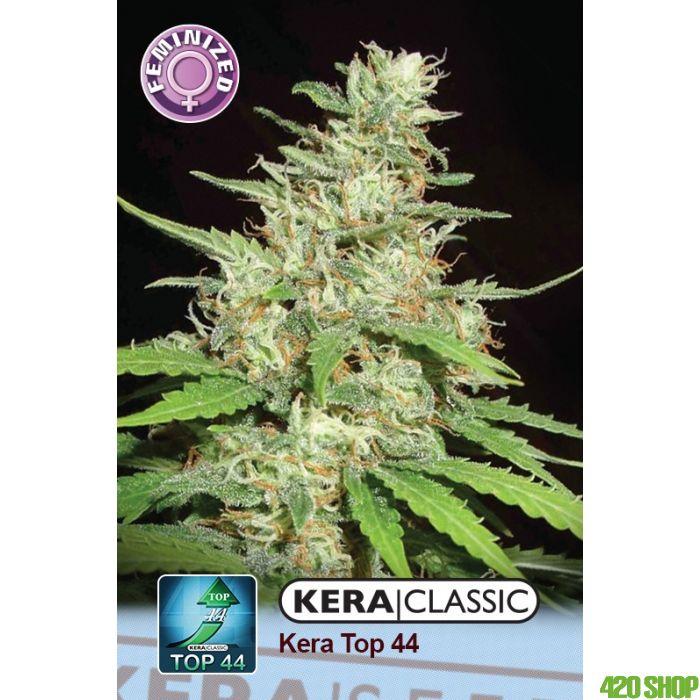 Top 44 Kera Seeds