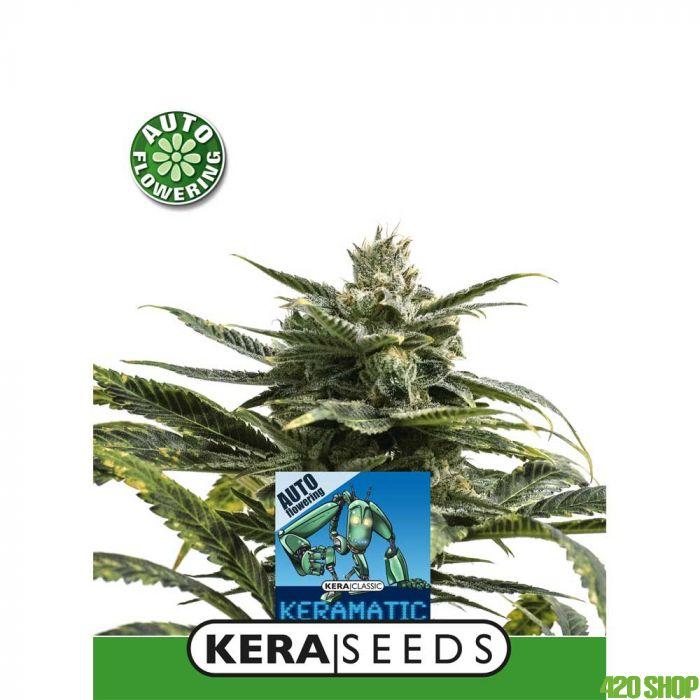 Kera Matic Kera Seeds