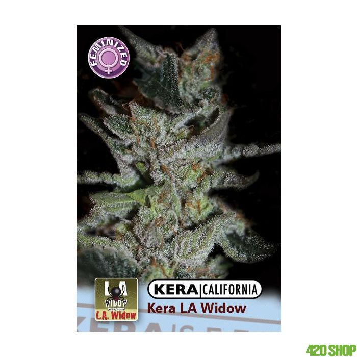 LA Widow Kera California
