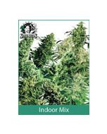 Sensi Seeds Indoor Mix