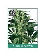 X Haze Sensi White Label