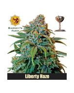 Liberty Haze Barneys Farm