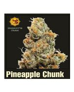 Pineapple Chunk Barneys Farm