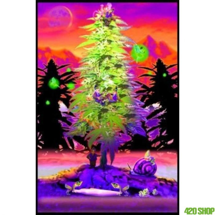 Blacklight Poster Weed Gnomes