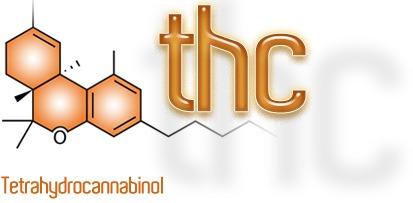 THC / Cannabioiden